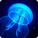 Night Light Jelly Fish LWP icon