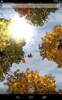 Screenshot of Falling Leaves Free Wallpaper