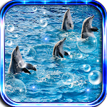 Dolphin Music live wallpaper