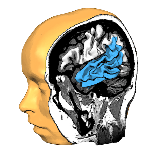Brain Tutor 3D LOGO-APP點子