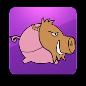 Frying Pig