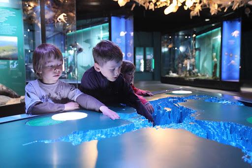 Ocean exhibits at Meeres Museum in Straslund, Germany.