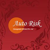 Auto Risk Management 2015