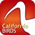 Audubon Bird Guide: California icon