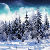 Nature Winter Live Wallpaper