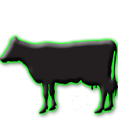 Milk Quality in Dairy Herds