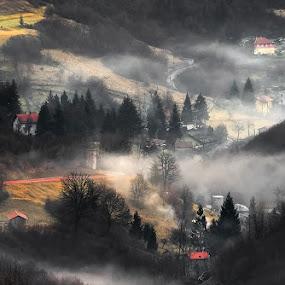 Morning fog by Geanina Boureanu - Landscapes Mountains & Hills ( nature, fog, moning )