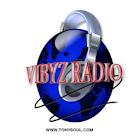 Vibyz Radio icon