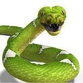 python3d