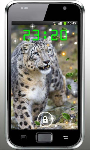 Snow Leopard Asia HD LWP