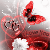 Red Butterfly White Flower Lov
