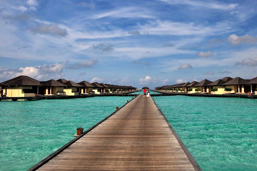 Maldives accomodation by Adriana Bleau - Landscapes Travel ( water, turquise, maldives, villes, rencontres, continents, découvertes curiosités, personnes, marchés, bridge,  )