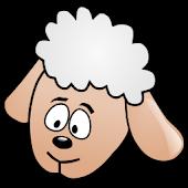 Baaing Sheep