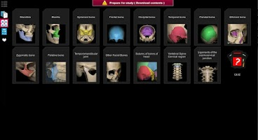 Screenshot of Anatomy Learning - 3D Atlas