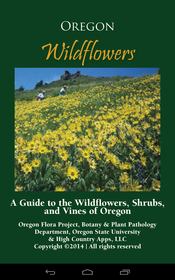 Oregon Wildflowers - screenshot