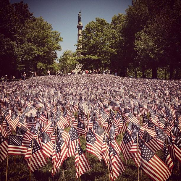 Memorial Day flag garden by Sarah Beth - City,  Street & Park  City Parks ( memorial day, american flag )