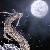 Moon Dragon Black