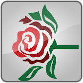 Ivy Rose Music