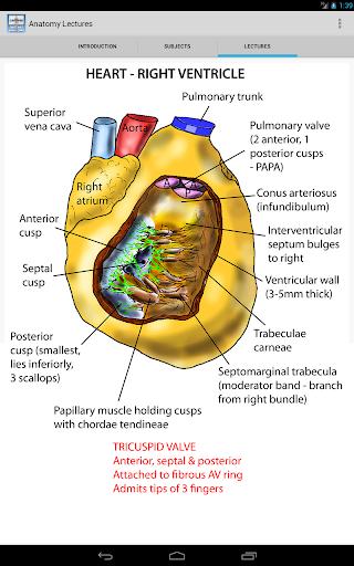 【免費醫療App】Anatomy Lectures-APP點子