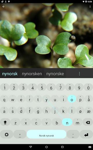 Nynorsk Keyboard plugin