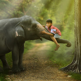 playing with elephant by Muhamad Anshorullah - Digital Art Things ( , Free, Freedom, Inspire, Inspiring, Inspirational, Emotion )