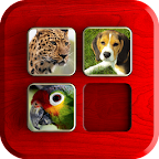 PuzzleBox : Animals