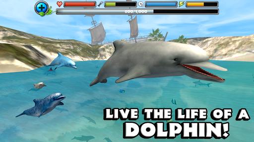 Dolphin Simulator image   6