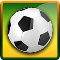 Jalvasco World Cup 2014 icon