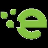 e-pity 2013 - pity roczne