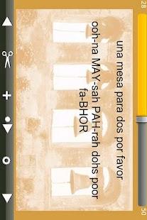 Flash Spanish- screenshot thumbnail