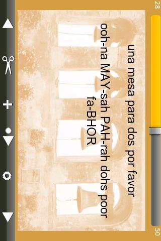 Flash Spanish- screenshot