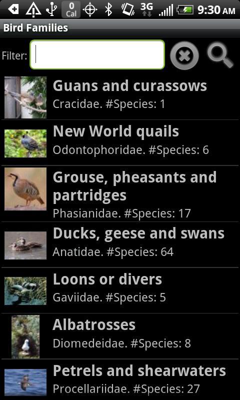Birdspotter - screenshot