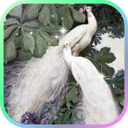 個人化必備App Peacocks Live Wallpaper LOGO-綠色工廠好玩App