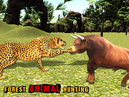 African Cheetah Survival Sim 1.1 screenshot 69711