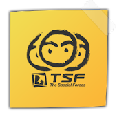 TSF Notepad Widget
