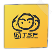 TSF Notepad Widget