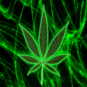Pot Leaf Keyboard Skin logo