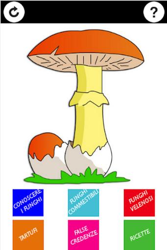Guida Funghi