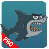 Shark Nemo