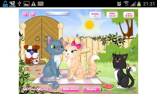 Jogos de Gatos- screenshot thumbnail