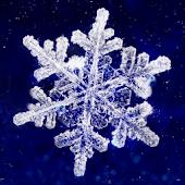 cristal de neige-きせかえLab.