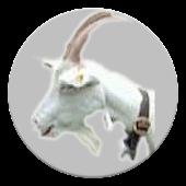 Poke that Goat