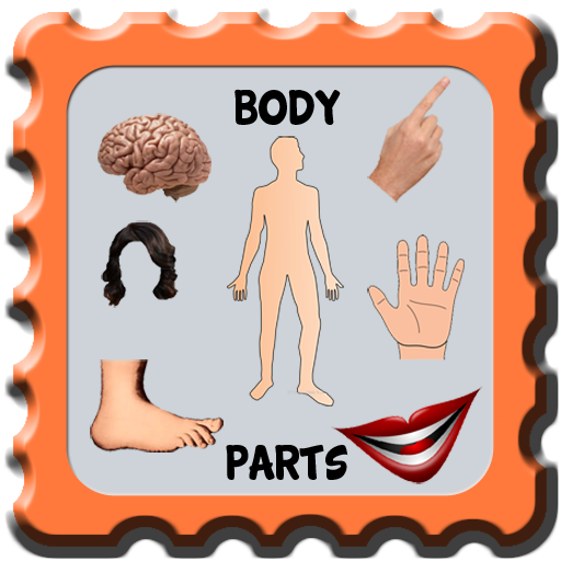 Kids Learning Body Part