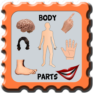 Kids Learning Body Part for PC and MAC