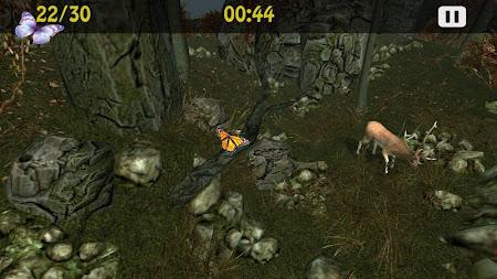 Butterflies Catch Craze 3D 1.0 screenshot 6199