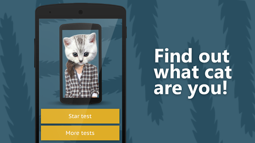 脸部扫描:是什么猫2