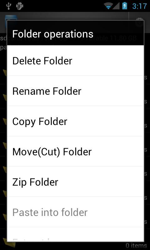 File Manager- screenshot