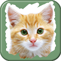 Pet Animals Scratch Game icon