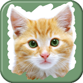 Pet Animals Scratch Game