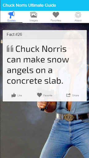 Chuck Norris Ultimate Guide